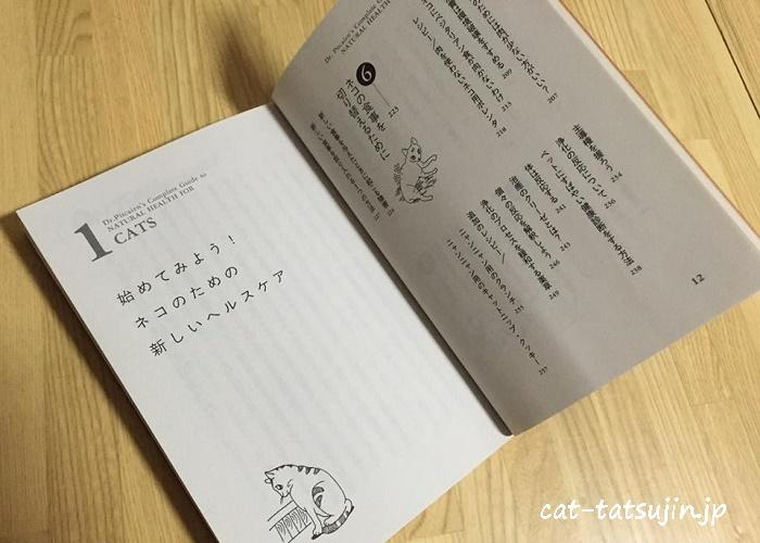 catbook2-2