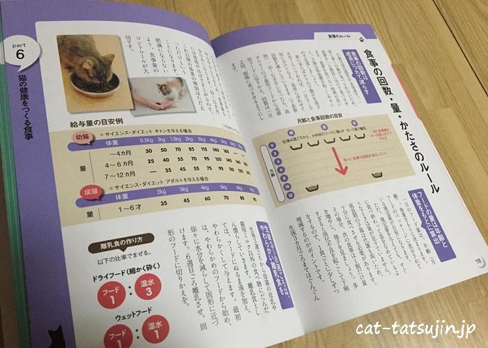 catbook4-2
